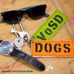 ArtByAarohi-vosd-dogtags2